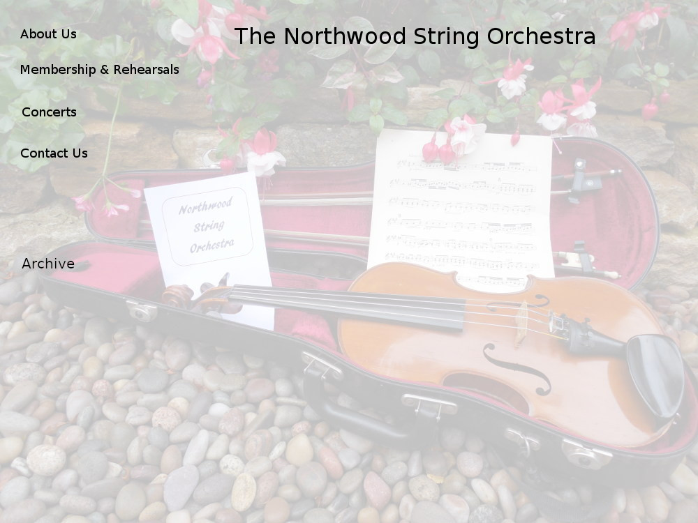 An Amateur String Orchestra in Southampton